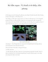 Ké đầu ngựa - Vị thuốc trừ thấp, tiêu phong pdf