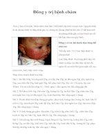 Đông y trị bệnh chàm pdf
