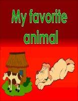 My Favorite Animal docx