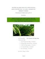 """Tiểu luận """"Phân tích lợi thế cạnh tranh của sản phẩm gạo Việt Nam sang thị trường Philippines"""" ppsx"""