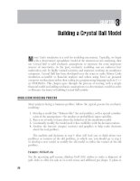 Financial Modeling with Crystal Ball and Excel Chapter 3 potx