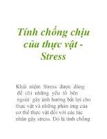Tính chống chịu của thực vật Stress pot