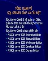 tổng quan về sql server 2005 và cài đặt