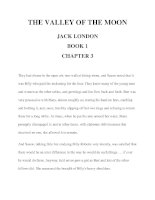 THE VALLEY OF THE MOON JACK LONDON BOOK 1 CHAPTER 3 ppt