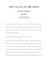 THE VALLEY OF THE MOON JACK LONDON BOOK 1 CHAPTER 10 pps