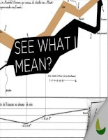 See what I mean: Brief guide to Information Design