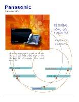 Hệ thống tổng đài IP hỗn hợp - KX-TDA100, KX-TDA200 pot