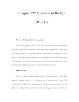 Chapter 029. Disorders of the Eye (Part 11) potx