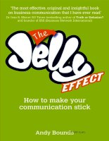 the jelly effect how to make your communication stick