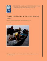 Gender and fisheries in the Lower Mekong Basin ppt