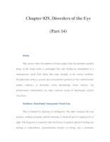 Chapter 029. Disorders of the Eye (Part 14) pps