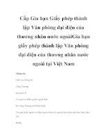 Cấp Gia hạn Giấy phép thành lập Văn phòng đại diện của thương nhân nước ngoàiGia hạn giấy phép thành lập Văn phòng đại diện của thương nhân nước ngoài tại Việt Nam pdf