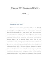 Chapter 029. Disorders of the Eye (Part 17) potx