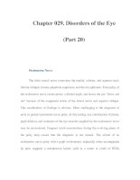 Chapter 029. Disorders of the Eye (Part 20) ppt