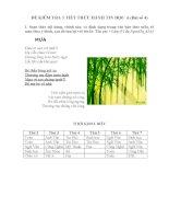 Đề kiểm tra 1 tiết TH (bài số 4)