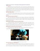 Khuyến cáo của Tổ chức Y tế thế giới về phòng ngừa bệnh tả tại Việt Nam ppt