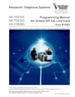 Programming Manual for Virtual SIP CO Line Card Pure IP-PBX pptx