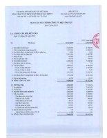 báo cáo tài chính của công ty mẹ quý 1 năm 2010 tổng công ty cổ phần dịch vụ kỹ thuật dầu khí việt nam