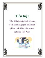 Tiểu luận: Vấn đề hội nhập kinh tế quốc tế và khả năng cạnh tranh sản phẩm xuất khẩu của ngành dệt may Việt Nam pdf