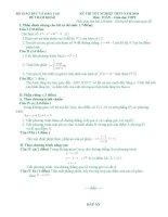 đề mẫu toán TN 2010 giai chi tiet