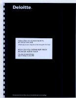 báo cáo tài chính hợp nhất sau kiểm toán năm cho năm tài chính kết thúc ngày 31 tháng 12 năm 2008 tổng công ty cổ phần dịch vụ kỹ thuật dầu khí ptsc