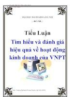 Tiểu luận: Tìm hiểu và đánh giá hiệu quả về hoạt động kinh doanh của VNPT pdf