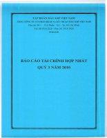 báo cáo tài chính hợp nhất quý 3 năm 2010 tổng công ty cổ phần dịch vụ kỹ thuật dầu khí việt nam