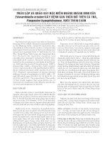 Phân lập và khảo sát đặc điểm kháng kháng sinh của Edwardsiella ictaluri gây bệnh gan thận mủ trên cá tra pps