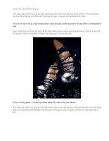 10 quy tắc cần nhớ khi đi giày