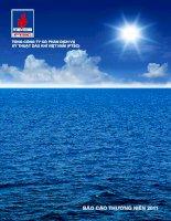 báo cáo thường niên 2011 tổng công ty cổ phần dịch vụ kỹ thuật dầu khí việt nam