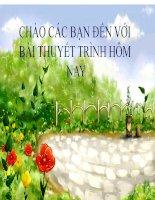 """NGHĨA CỦA PHIM """" HỒ CHÍ MINH CHÂN DUNG MỘT CON NGƯỜI"""" pot"""