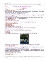 Giáo án Tiếng Việt, Toán lớp 1. tuần 33