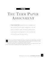 THE TERM PAPER A SSIGNMENT - Express yourself pdf