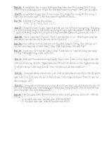 Bộ đề Thi HSG toán Lớp 5 (04)