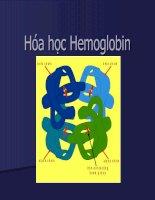 Hóa học Hemoglobin - Đại học Y Hà Nội