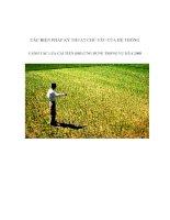 CÁC BIỆN PHÁP KỸ THUẬT CHỦ YẾU CỦA HỆ THỐNG CANH TÁC LÚA CẢI TIẾN (SRI) ỨNG DỤNG TRONG VỤ MÙA 2008 docx