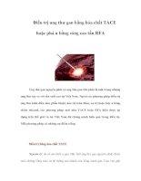 Điều trị ung thư gan bằng hóa chất TACE hoặc phá u bằng sóng cao tần RFA doc