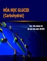 Hóa học glucid (Carbohydrat)