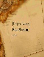 Mẫu PowerPoint: PostMortem pptx