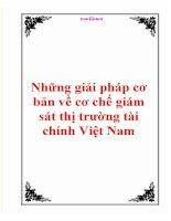 Những giải pháp cơ bản về cơ chế giám sát thị trường tài chính Việt Nam pps