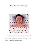 Các bệnh sốt phát ban ppt