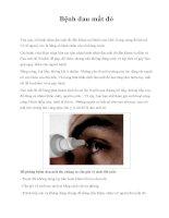 Bệnh đau mắt đỏ docx