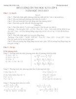 Đề cương ôn thi  môn toán lớp 8 học kỳ II