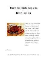 Thức ăn thích hợp cho từng loại da pps
