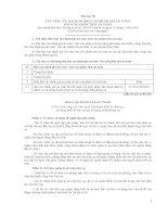 Phụ lục III CẤU TRÚC VÀ NỘI DUNG BÁO CÁO ĐÁNH GIÁ AN TOÀN, BÁO CÁO PHÂN TÍCH AN TOÀN doc