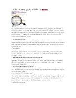 10 lỗi thường gặp khi viết CV tiếng Anh pot