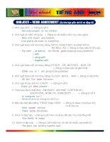 Học nhanh Tiếng Anh Cấp 3 - Subject Verb Agreement pdf