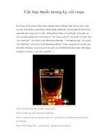 Các loại thuốc tương kỵ với rượu docx