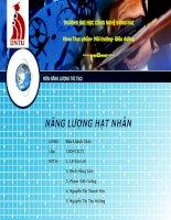 Báo cáo môn học Năng lượng tái tạo Đề tài: Năng lượng hạt nhân