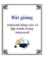 Bài giảng: Autocad nâng cao và lập trình trong Autocard pot